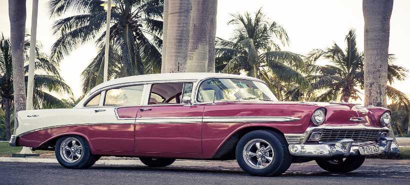 Bild von einem kubanischen oldtimer und Palmen im Hintergrund