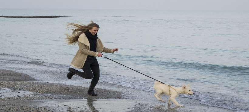 Eine Frau und ein Hund laufen am Strand