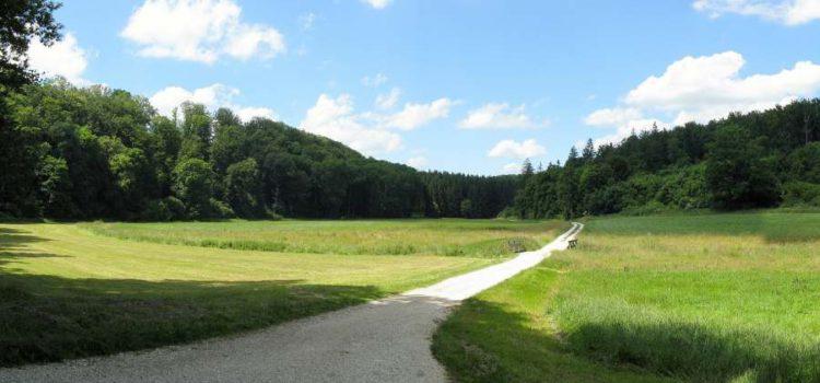 Burgen, Höhlen und Schlösser in der Fränkischen Schweiz