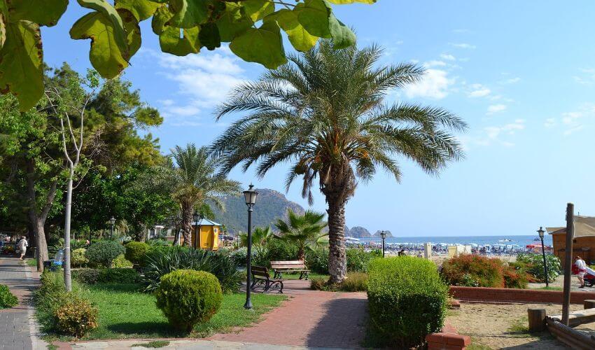 Ein schöner Park mit Palmen, Pflanzen und Gehwegen.