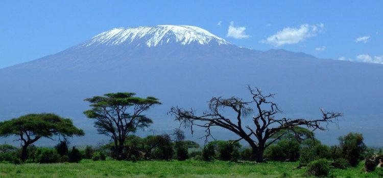 Voraussetzungen für eine Kilimandscharo-Tour