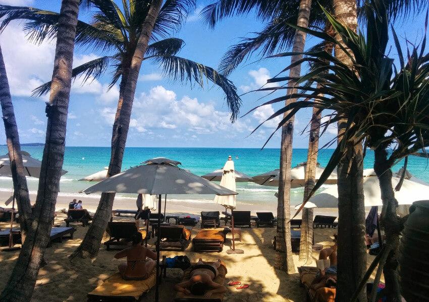 Liegen unter Palmen mit Blick auf das Meer.