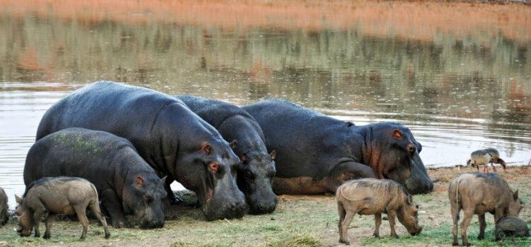 Namibia pur – Rundreise auf eigne Faust
