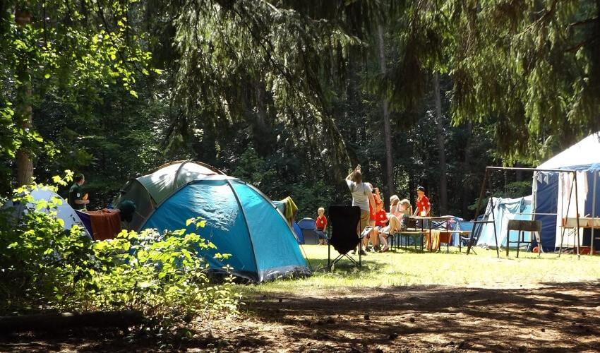 Zelte am Waldrand, auf einer Wiese und in der Mitte Bierbänke, wo die Camper sitzen.